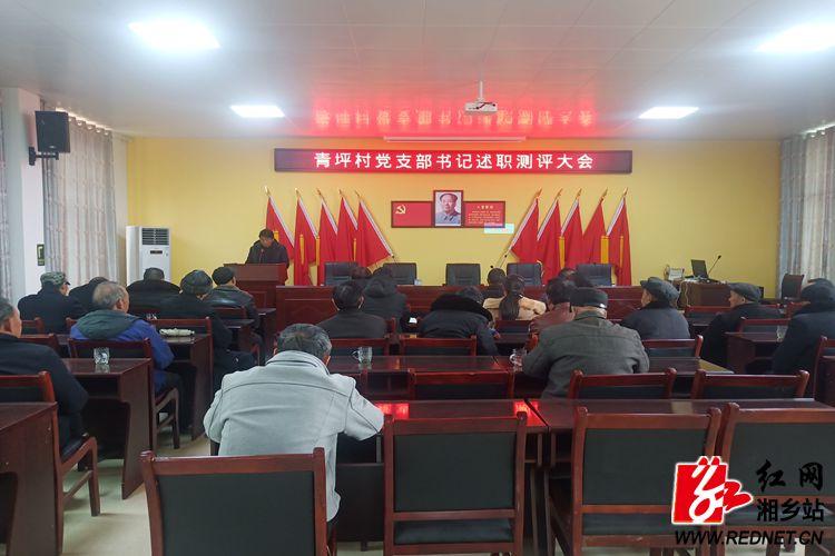 月山镇:各党支部书记开展党建工作述职评议