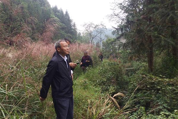 省知联会会长、中科院亚热带农业生态研究所首席研究员吴金水考察茅坪村