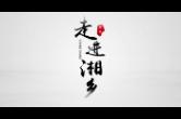 走进湘乡MV