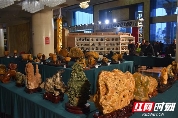 """现场共展出350件观赏石作品,其中包括""""百川""""""""红豆""""""""荷韵""""等荣获全国奖项的12方奇石。以石为乐,借石抒情,成为中国传统文化的重要内容。2014年,赏石艺术经国务院批准列入第四批国家级非物质文化遗产名录。"""