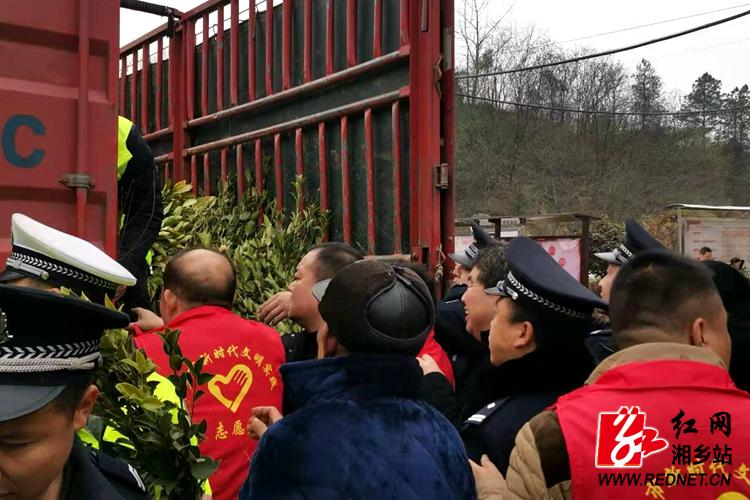"""文化科技卫生""""三下乡"""" 上千株树苗免费送"""