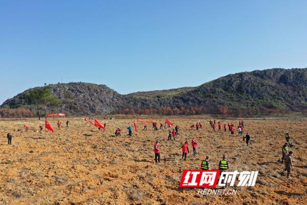 道县:开展春季义务植树 助力脱贫攻坚