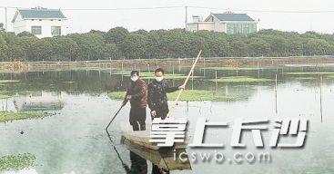 望城区的虾农们已经开始作业。望城区农业农村局供图