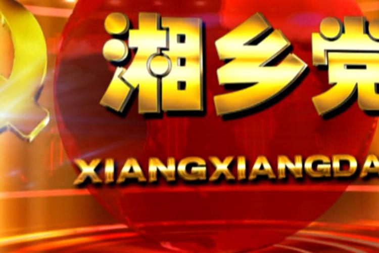 """《湘乡党建》第150期  战""""疫""""一线 党旗飘扬(四)"""