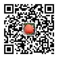 61_200316155408_1.jpg