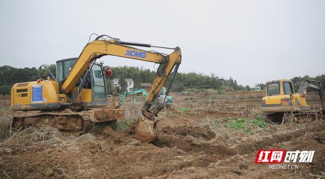 在湘潭县中路铺镇柳桥村,农户们抢抓晴好天气,驾驶着挖土机翻耕整地,为春种做准备。何新闻 摄.jpeg