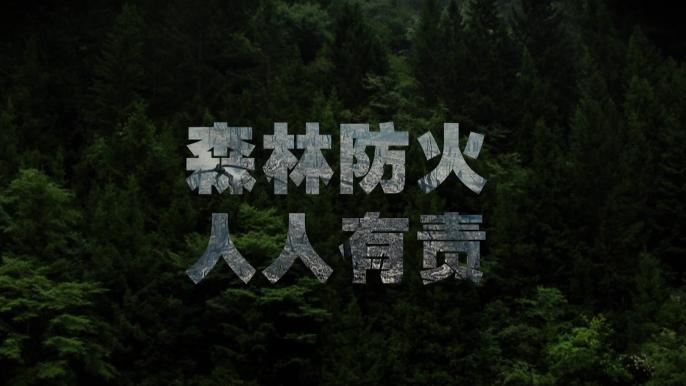视频公益广告:森林防火 人人有责