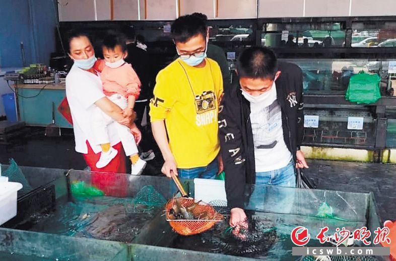 随着马王堆海鲜市场商户有序复工复业,前来选购、品尝海鲜的市民越来越多。 长沙晚报通讯员 章博 摄