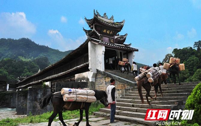 2020湖南春季乡村文旅节28日启幕 邀你细品安化茶生活