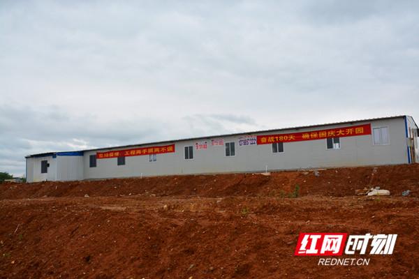 项目建设加速度丨永州道县:全产业链布局助推高质量发展