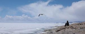 在世界最高湖 看洁白版水天一色