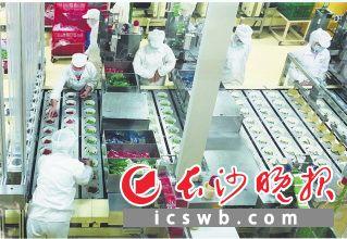 长沙市顶益食品有限公司生产车间一片繁忙景象。段华良 张铸英 摄