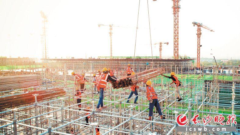 总投资320亿元的长沙惠科项目,主体封顶时间有望提前20天。邓霞林 摄