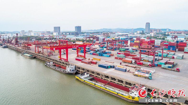 长沙新港货物吞吐量节节攀升。  长沙晚报全媒体记者 邹麟 摄