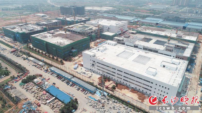 5月25日,长沙蓝月谷智能制造产业园项目主体结构全面封顶。  长沙晚报全媒体记者 陈焕明 通讯员 袁潜 摄影报道