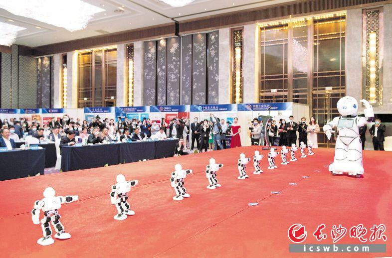 第九届长沙金融服务节开幕式上的智能机器人舞蹈。邹麟 摄