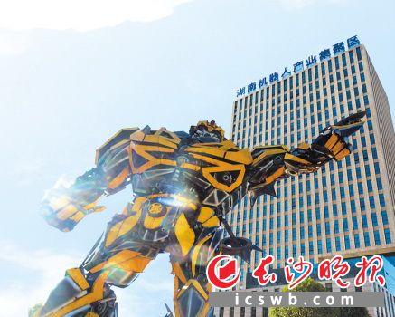 作为全省唯一的机器人产业集聚区,雨花经开区已引进人工智能机器人产业链企业229家。资料图片