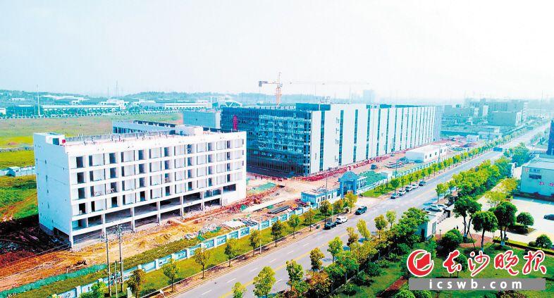 总投资50亿元的豪恩声学项目的建设现场,项目有望于今年7月实现投产运营。邓霞林 摄