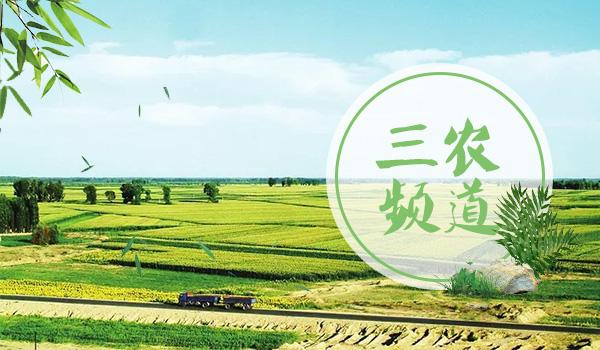 南县生态农业绿意浓