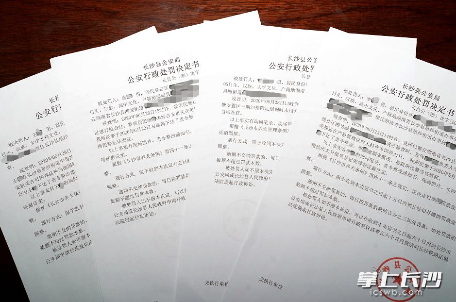 长沙县警方办理了多起涉犬行政案件,图为部分行政处罚决定书。 长沙晚报通讯员 盛磊 摄