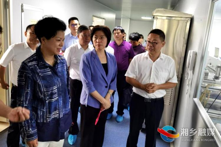 省人大代表湘潭第二小组来我市开展主题活动