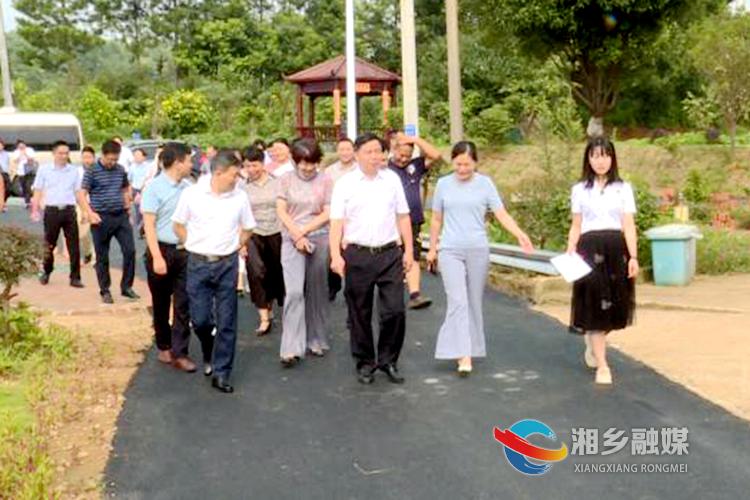 李江南来湘乡调研乡镇民生实事项目人大代表票决制工作