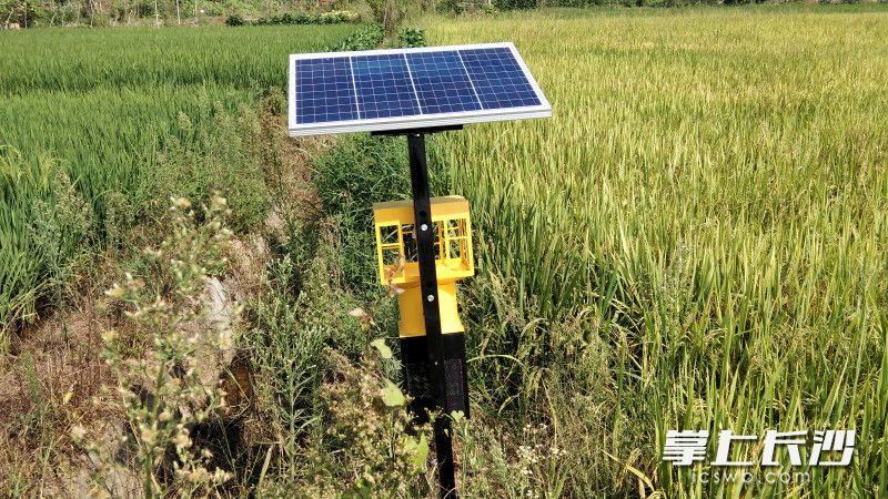 各种科技设备加持,同样可以达到使用农药一样的杀灭害虫效果。