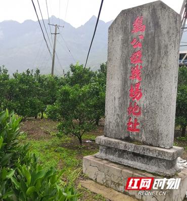 IMG_20200711_185849_看图王.jpg