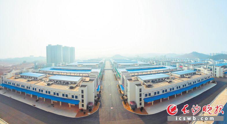 红星农副产品全球采购中心一期基本建设完成,预计今年10月试运营 。龙洪波 摄