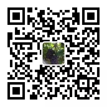 微信图片_20200717144346.jpg