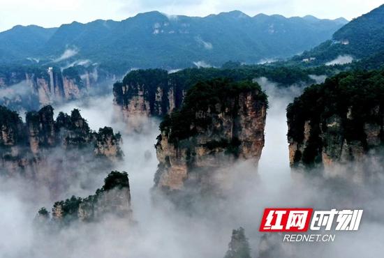 受连续多日的降温降雨天气影响,湖南张家界武陵源核心景区出现成片云海景观。.jpg