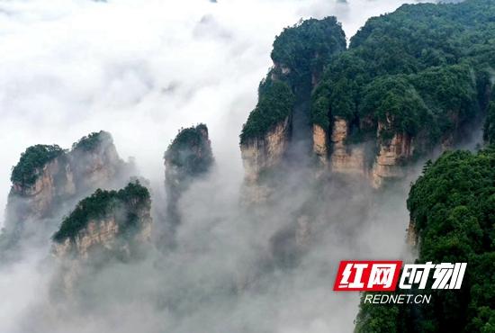 云雾缠绕在俊俏挺拔的山峰间,漫过天际,犹如仙境。令各地游客和摄影爱好者拍手叫绝。.jpg