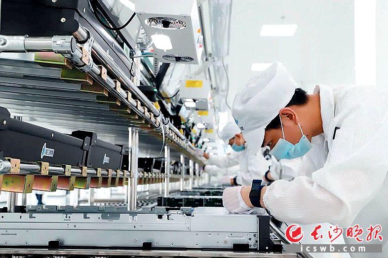 短短100余天,湘江鲲鹏实现从建设到投产,在湘江西岸展翅腾飞。王志伟 摄