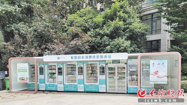 22日,国网长沙供电公司建设的首批消费扶贫智能柜开张。     长沙晚报通讯员周熠湘摄