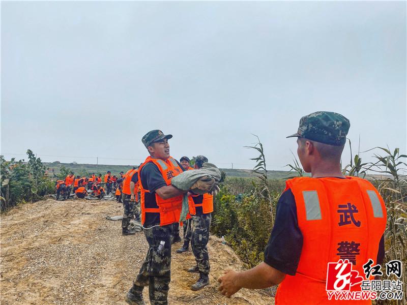 中洲乡2官兵接力运送砂袋.jpg