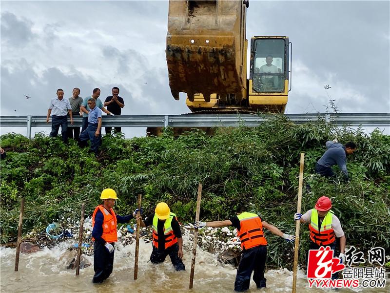 毛竹1施工人员将铁桩固定 挖机将铁桩打入水中.jpg
