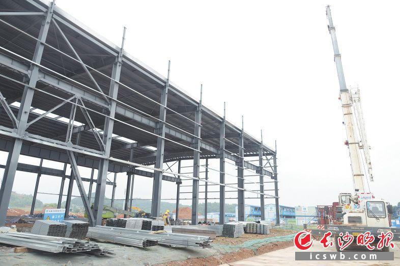 目前,中联智慧产业城土方机械园区高强钢备料中心建筑单体正在进行最后的屋面板安装。岑军 摄