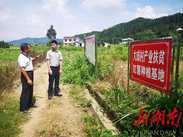 敢想敢干用心用情——记浏阳市文家市镇党委书记谢波