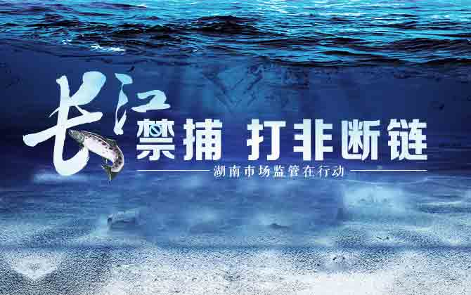 专题丨长江禁捕 打非断链 湖南市场监管在行动