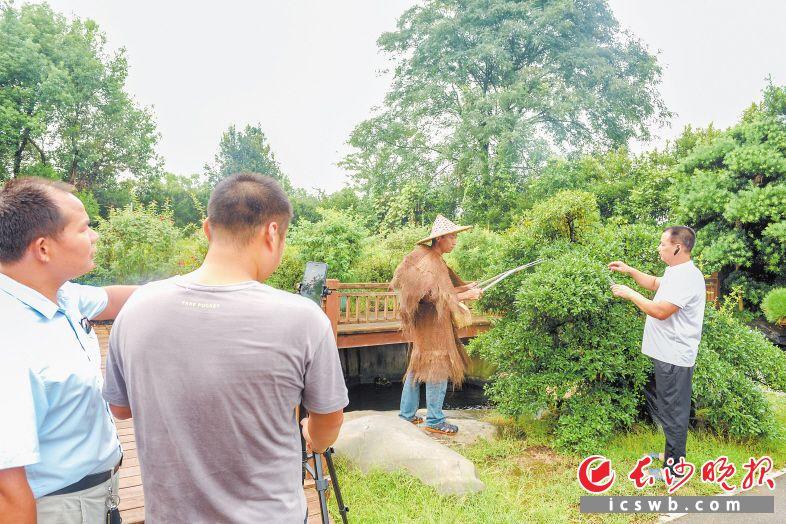 渡头村公益短视频团队在当地花木基地取景拍摄。长沙晚报全媒体记者 陈飞 摄