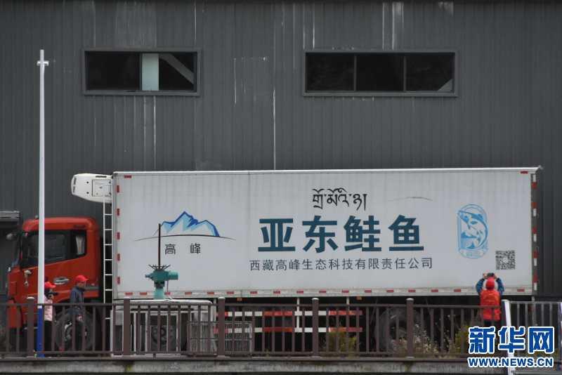 """赢咖3官网注册西藏亚东:科技诸葛让""""生态水""""变身""""致富源""""(图3)"""