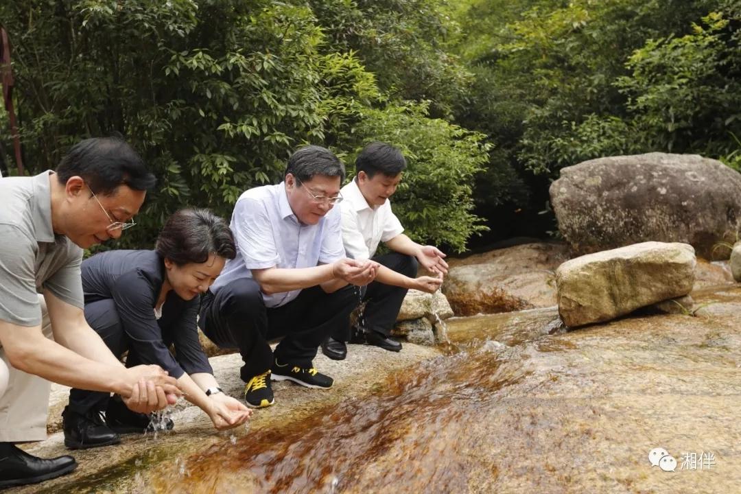2018年6月29日,省委书记杜家毫到蓝山县湖南湘江源国家森林公园境内的野狗岭,实地考察湘江源头生态环境保护情况。罗新国 摄