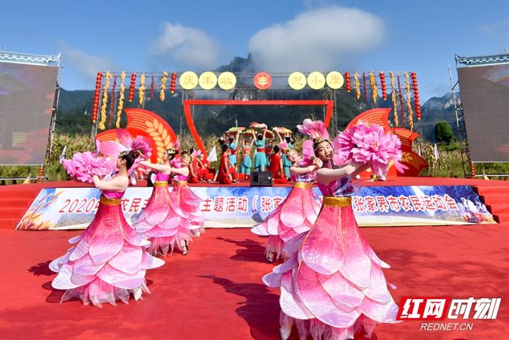 2020年中国农民丰收节湖南主题活动(张家界分会场)启动