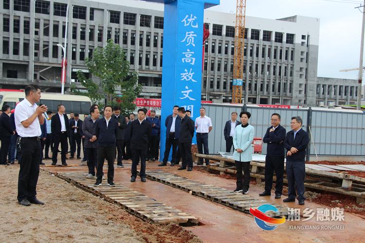 观摩团一行在湖南维泰科技有限公司项目施工现场察看。.jpg