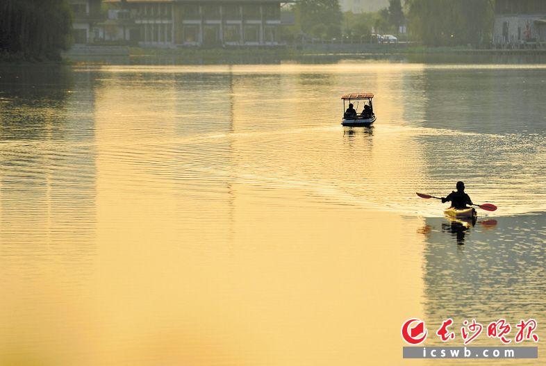 月湖公园如镜水面上,市民正在悠闲划船。    长沙晚报全媒体记者 邹麟 摄