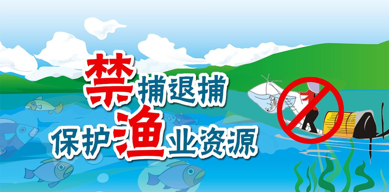 专题|禁捕退捕保护渔业资源