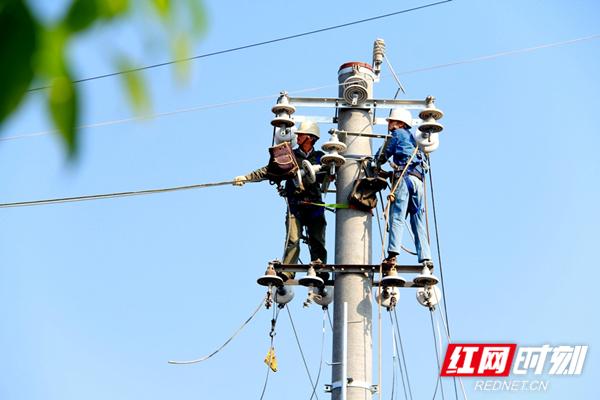 4.10月10日,国网汉寿县供电公司对10千伏枫南线集中整改,图为施工人员在17号杆上更换导线。(郭俊)_副本.jpg
