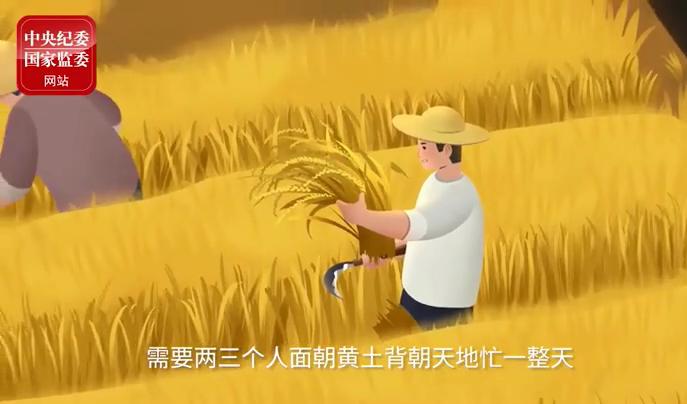一个动画告诉你:14亿人都节约1粒米,会发生什么