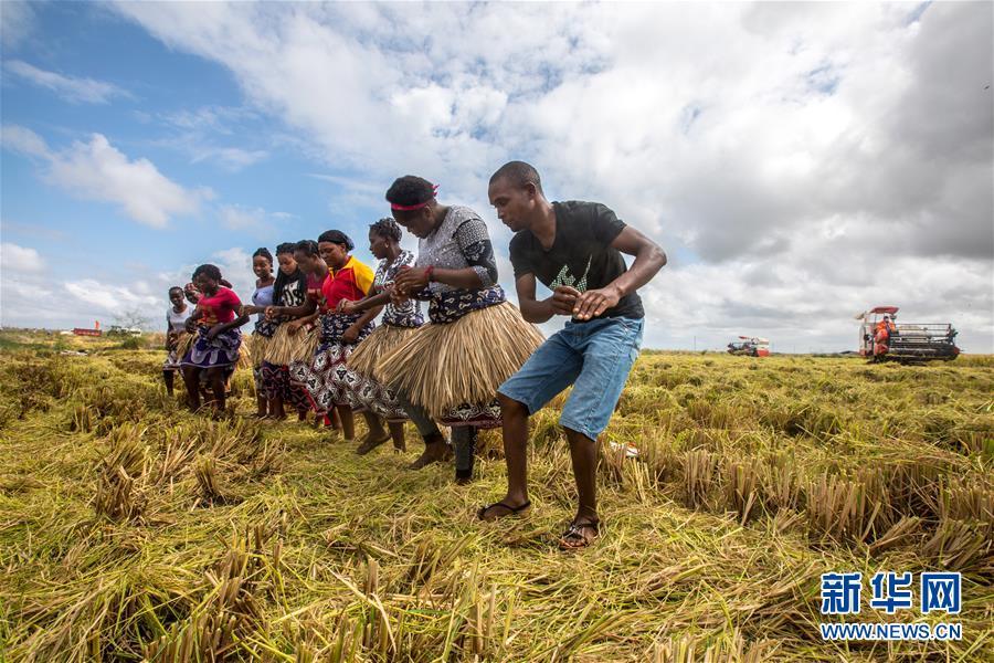(国际)(8)世界粮食日:维护全球粮食安全 世界各国休戚与共