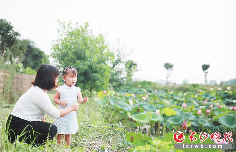 双江口镇生态环境优美,令游人流连忘返。刘静 摄